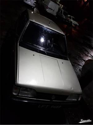 Polonez 04