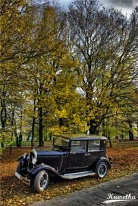 Citroen C4 1932 10