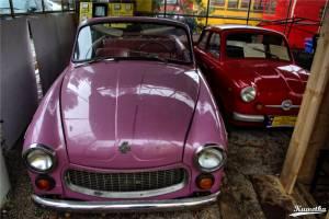 Syrena Cabrio, Mikrus MR-300